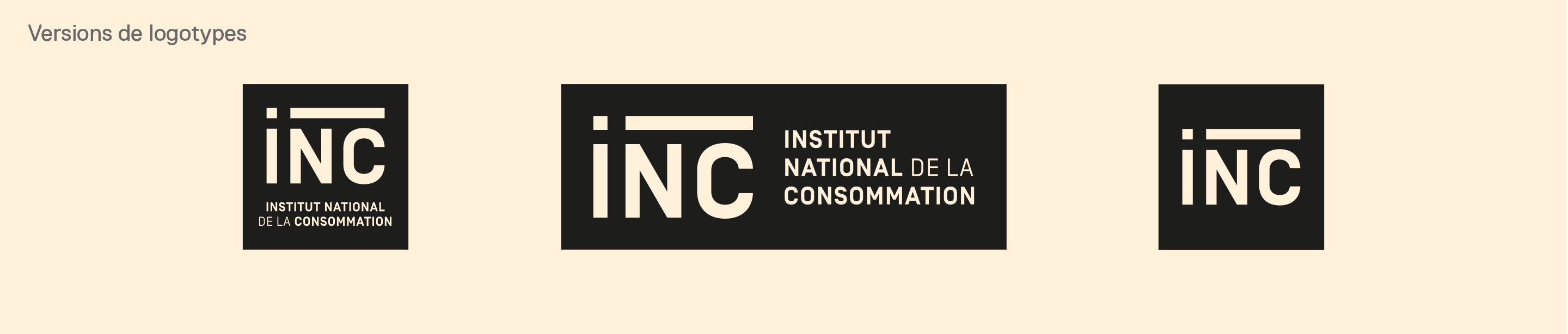 Institut National Consommation creation logotype